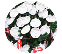 Wish Tree Program